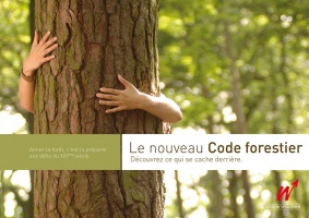 codeforestier